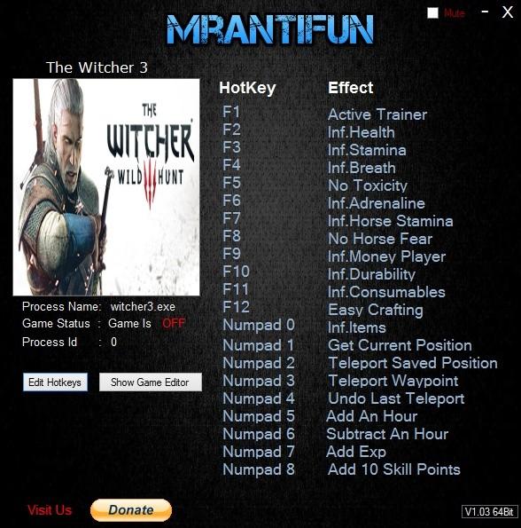 تصویر ترینر MrAntiFun برای بازی The Witcher 3